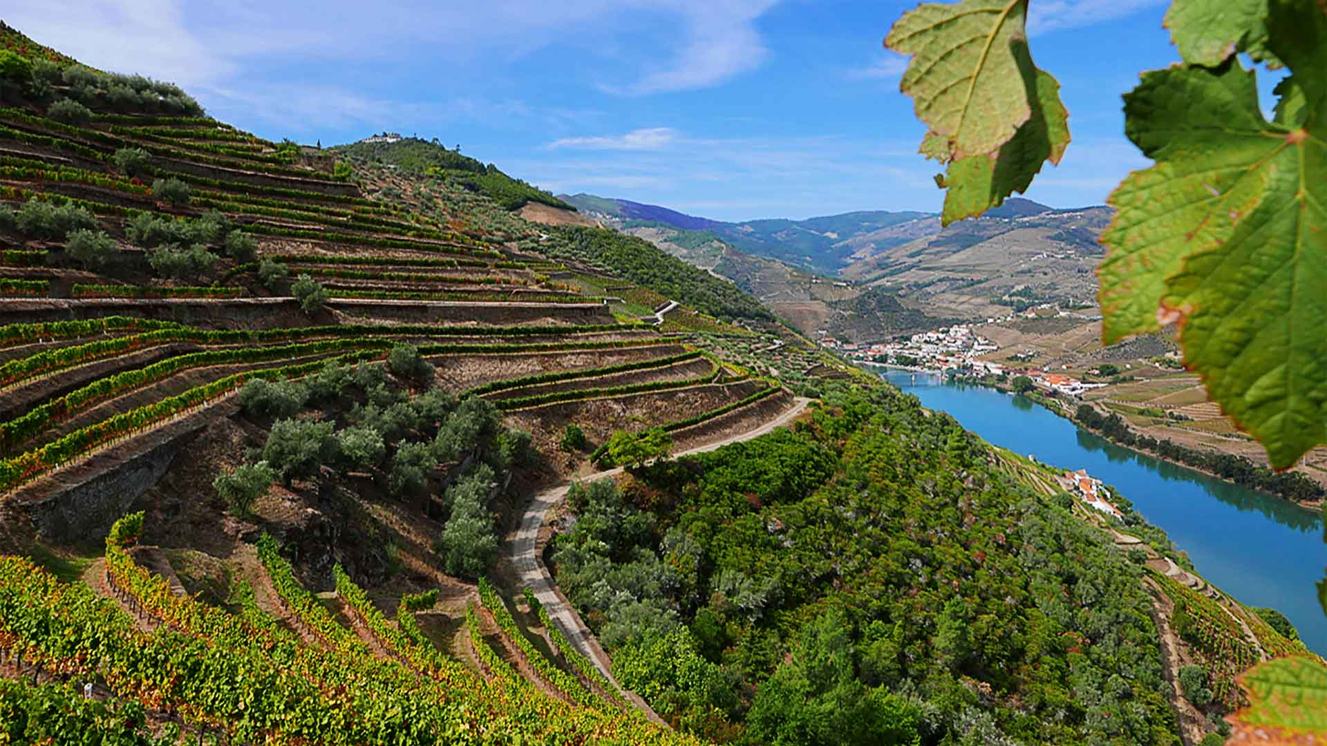 Beautiful Douro Valley Home of great Wines