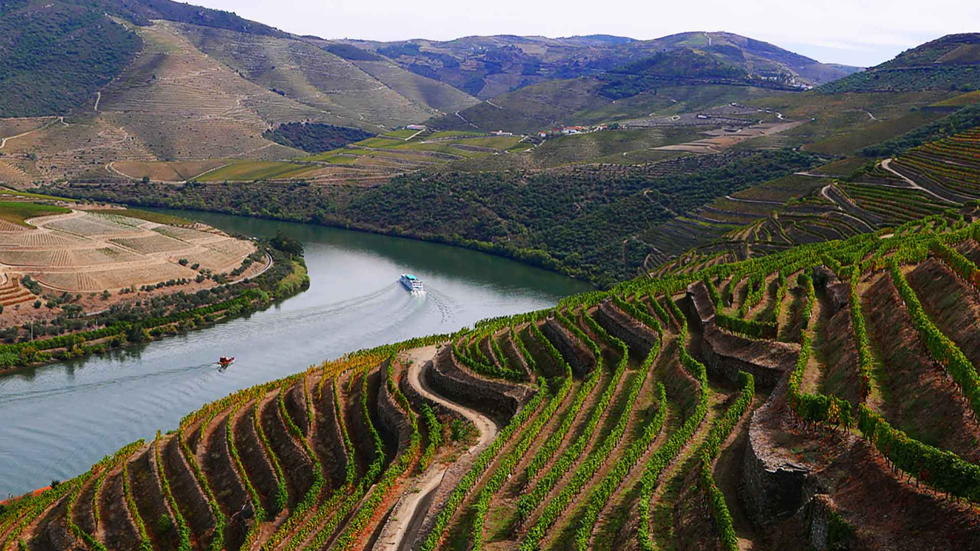 Wonderful Douro Valley Home of great Red wines and Port