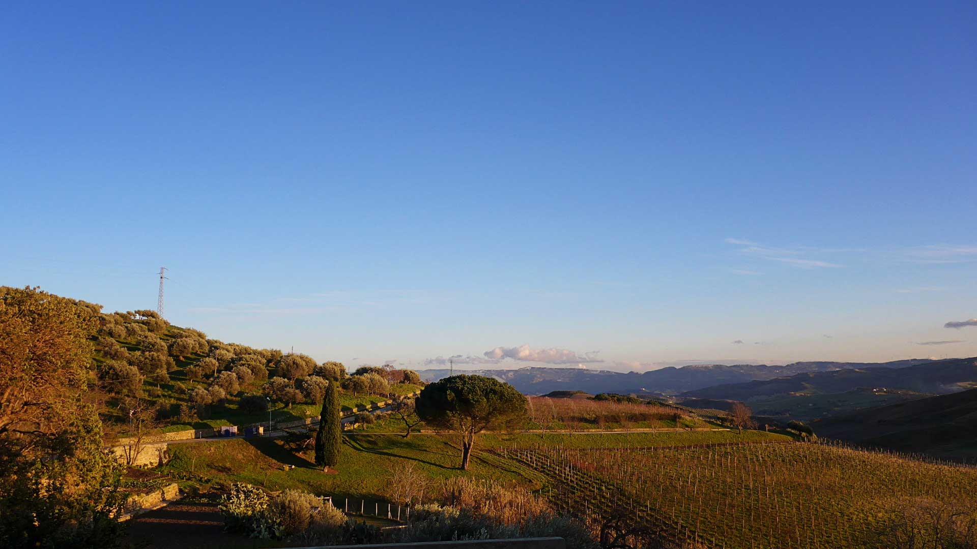 Wonderful sundowner in sicilian winter at Tenuta Regaleali
