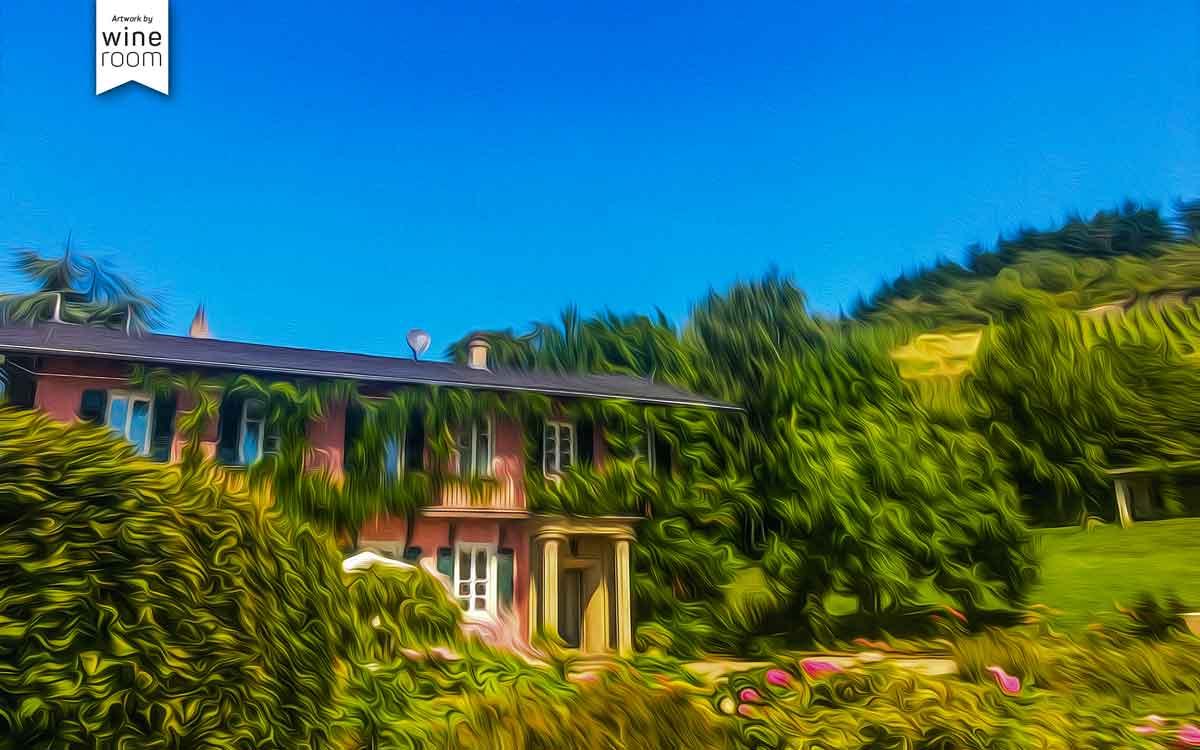 Haus aus Stampfbeton bei Weingut Cantzheim