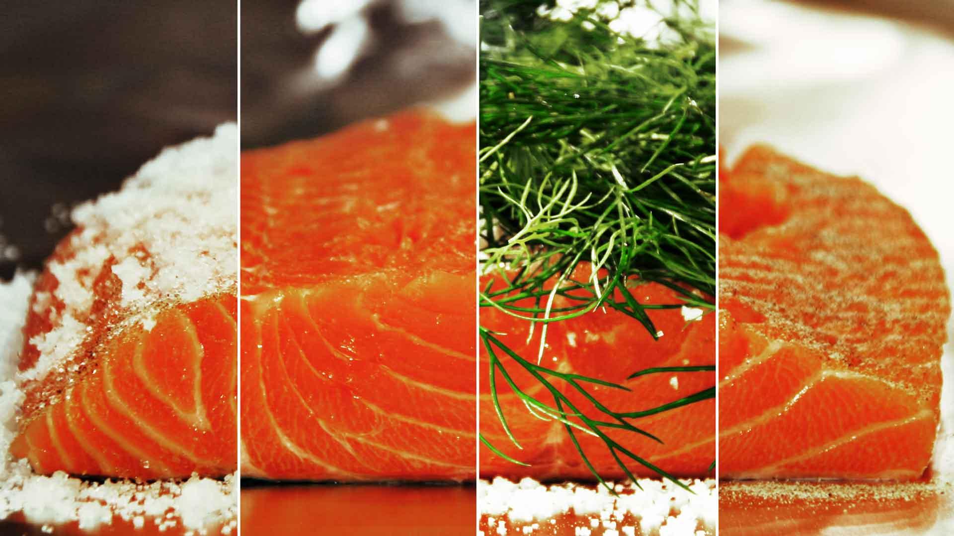 Herstellung Graved Lachs: alle vier Steps in einem Bild